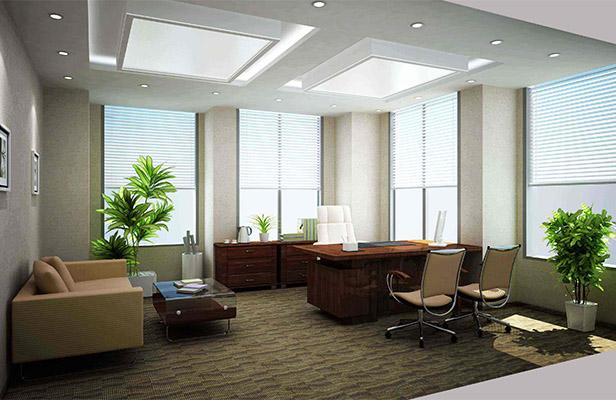 办公室装修完工后如何选择绿植?